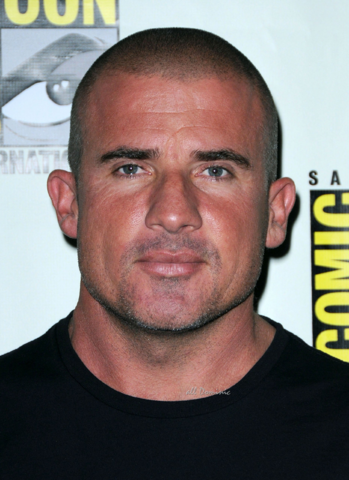 File:Dominic Purcell.png
