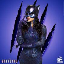 Promocional - Wildcat2