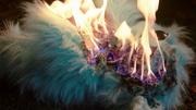 Beebo staje w płomieniach
