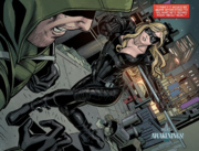 Arrow fights Canary while under the influence