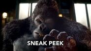 "The Flash 2x07 Sneak Peek 2 ""Gorilla Warfare"" (HD)"