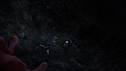 Flash gazes at Vibe's remains