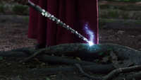 The Fairy Godmother enchants a tree root