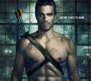 Season 1 (Arrow)