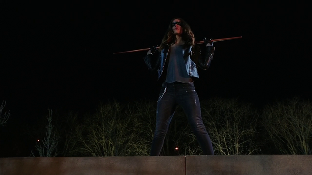 File:Dinah Drake in the field.png