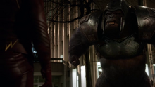 Grodd attacking The Flash