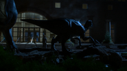 Dinosaur sculpture near Fernbank Museum of Natural History