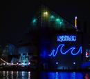 Starling City Aquarium
