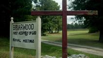 Briarwood (Terra-1)