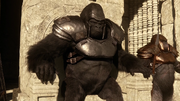 Grodd preparing attack on Earth-1