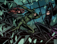 Roy, the Arrow and Huntress rescue Felicity
