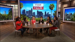 Cat on The Talk