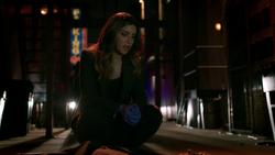 Dinah investigates a murder