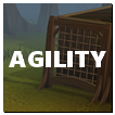 Agility Content2