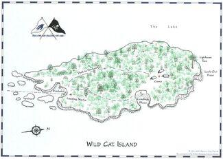 Wildcatisland