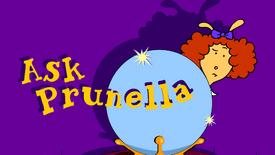 Ask Prunella Splash