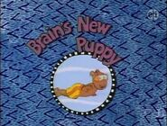 Brainsnewpuppy