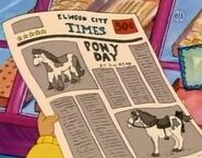Pony day