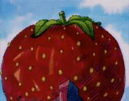 How the Cookie Crumbles - Huge Strawberry