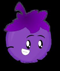 Yoyleberry 4