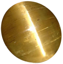 3CF23FA1-540E-4621-B153-0B0356BB3FB2