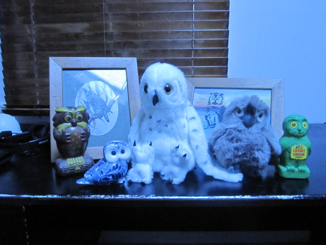 File:Owl collection.JPG