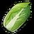 Napa Cabbage (ToV)