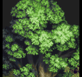 World Tree (ToP-PSX).png