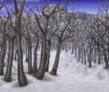 White Birch Forest (ToP).png