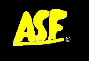 ASFflashlogo