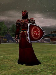 Radiant Blood Robe (Armor) Live