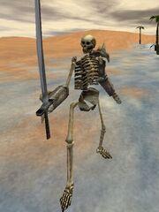 Skeleton Warrior Live