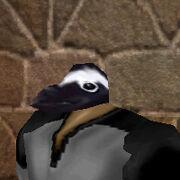 Penguin Mask Live