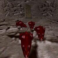 2.1N, 73.0W - Direland Rat Cave Live 2