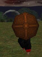 Bronze Round Shield