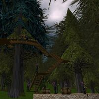 Tumerok Treehouse Live