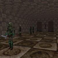 26.3S, 57.8E - Swamp Bunker Live 4