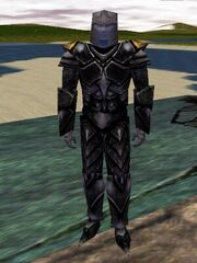 Pathwarden Diforsa Armor Live