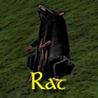 Rat Exemplar