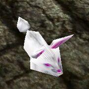White Bunny Slipper Live