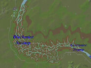 Blackmire Swamp Map