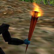 Torch Live