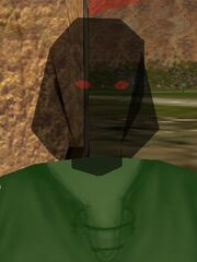 Shadow Mask Live
