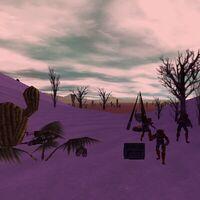 21.9S, 0.1E - Drudge Camp Live 2