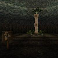 Dungeon Fern Live 2