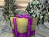 Hidden Presents