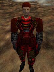 Lesser Koujia Shadow Armor Live