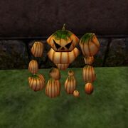 Pack Pumpkin Lord Live