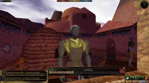 Asheron's Call - Towns- Uziz