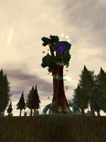 Viridian Deru Tree Live